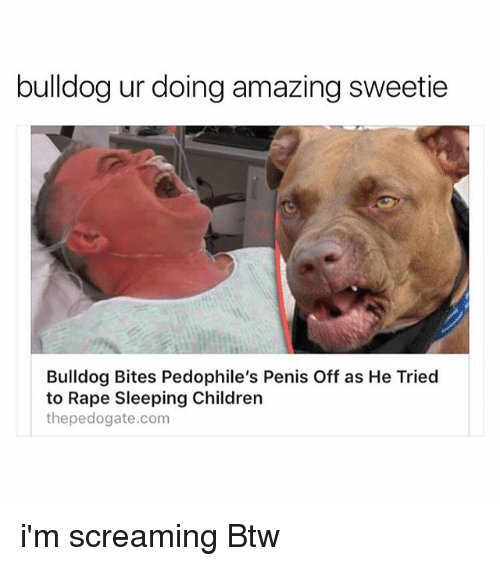 Children, Bulldog, and Penis: bulldog ur doing amazing sweetie  Bulldog Bites Pedophile's Penis Off as He Tried  to Rape Sleeping Children  thepedogate.com i'm screaming Btw