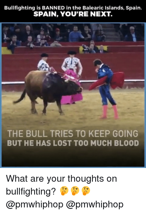 Memes, Too Much, and Lost: Bullfighting is BANNED in the Balearic Islands, Spain.  SPAIN, YOU'RE NEXT.  THE BULL TRIES TO KEEP GOING  BUT HE HAS LOST TOO MUCH BLOOD What are your thoughts on bullfighting? 🤔🤔🤔 @pmwhiphop @pmwhiphop