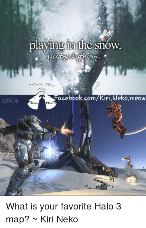 BUNGIE Playing in the Snow FacebookcomKiriNekomeow What Is