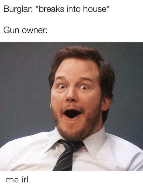 House, Irl, and Me IRL: Burglar: *breaks into house*  Gun owner: me irl