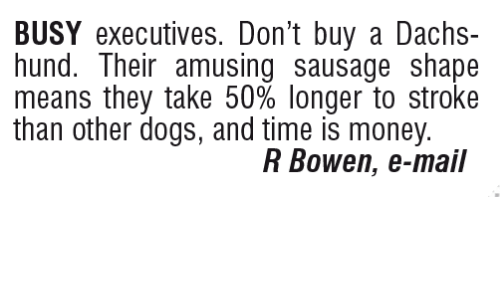 busy-executives-dont-buy-a-dachs-hund-their-amusing-sausage-15469944.png 38c0f438f887d