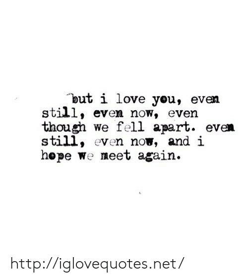 Love, I Love You, and Http: but i love you, even  still, even now, even  though we fell apart. even  still, even now, and i  hepe We meet again. http://iglovequotes.net/
