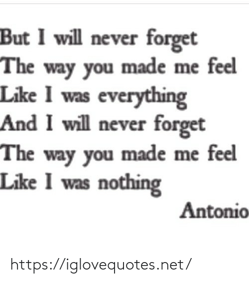 Never, Net, and Will: But I will never forget  The way you made me feel  Like I was everything  And I will never forget  The way you made me feel  Like I was nothing  Antonio https://iglovequotes.net/