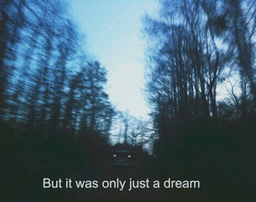 A Dream, Dream, and Just a Dream: But it was only just a dream