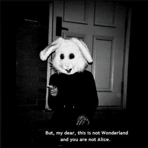 Alice, Wonderland, and You: But, my dear, this is not Wonderland  and you are not Alice