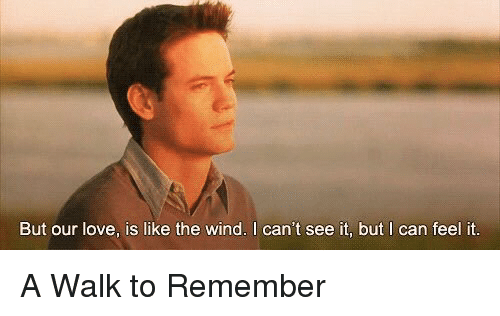 Memes, 🤖, and A Walk to Remember: But our love, is like the wind. I can't see it, but I can feel it. A Walk to Remember