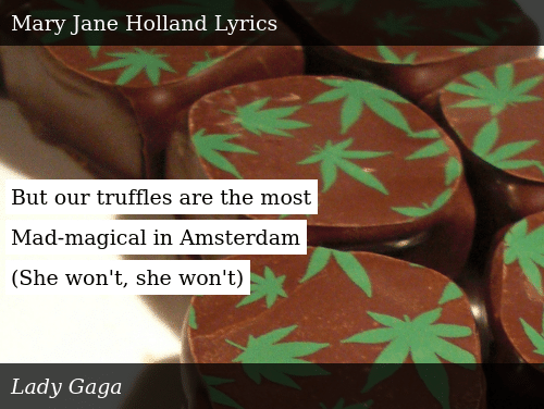 But Our Truffles Are the Most Mad-Magical in Amsterdam She
