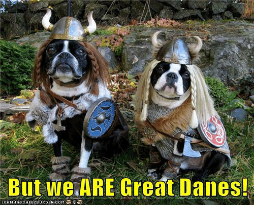 Memes, 🤖, and Com: But we ARE Great Danes!  ICANHASCHEE2EURGER COM