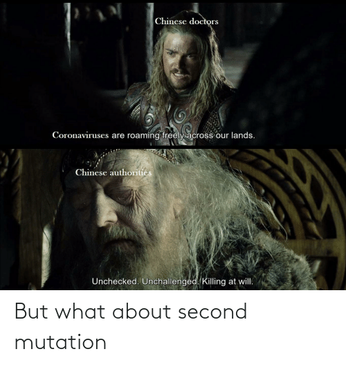 But What About Second Mutation Lord Of The Rings Meme On Me Me