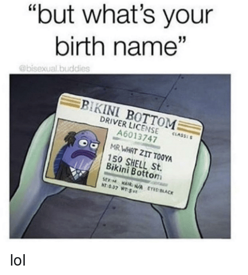 a3ef24ba8c But What's Your Birth Name BIKINI BOTTOM DRIVER LICENSE CLASS ...