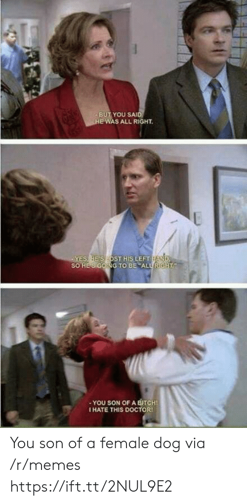 Doctor, Memes, and Dog: BUT YOU SAI  E WAS ALL RIGHT  ES HE'S OST HIS LEFT  SO HES GOING TO BE ALURIG  -YOU SON OF A BITCHI  I HATE THIS DOCTOR You son of a female dog via /r/memes https://ift.tt/2NUL9E2