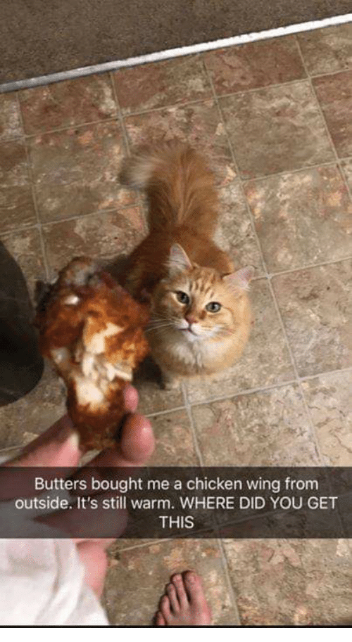 Butters Bought Me a Chicken Wing Fromm Outside It's Still