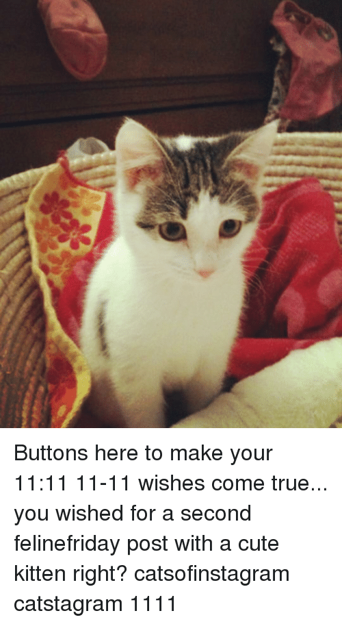 buttons here to make your 1111 11 11 wishes come true you wished for