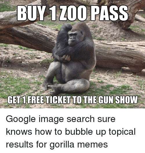 buy 1 zoo pass gets free ticketto the gunshow google 2637213 25 best gorilla meme memes dog and cats memes, chewing memes