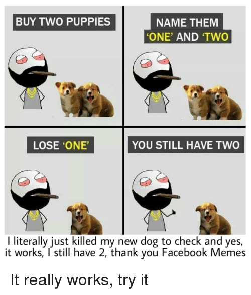 BUY TWO PUPPIES NAME THEM ONE' AND 'TWO LOSE 'ONE' YOU STILL HAVE