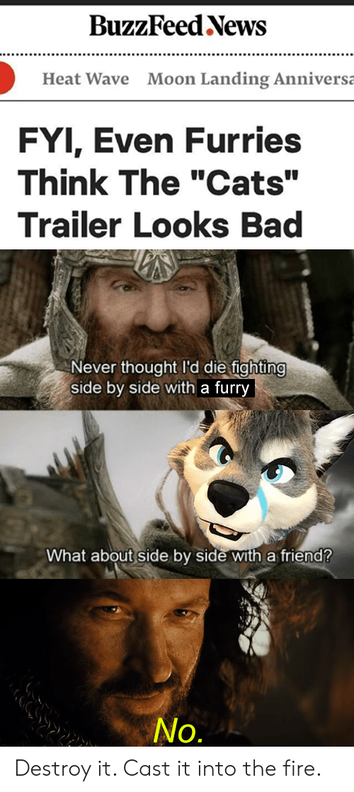 """Bad, Cats, and Fire: BuzzFeed News  Moon Landing Anniversa  Heat Wave  FYI, Even Furries  Think The """"Cats""""  Trailer Looks Bad  Never thought I'd die fighting  side by side with a furry  What about side by side with a friend?  No. Destroy it. Cast it into the fire."""