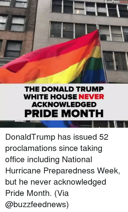Donald Trump, Memes, and White House: BuzzFeed  THE DONALD TRUMP  WHITE HOUSE NEVER  ACKNOWLEDGED  PRIDE MONTH DonaldTrump has issued 52 proclamations since taking office including National Hurricane Preparedness Week, but he never acknowledged Pride Month. (Via @buzzfeednews)
