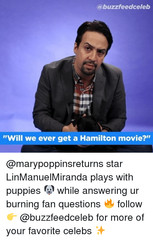 """Puppies, Movie, and Star: @buzzfeedceleb  """"Will we ever get a Hamilton movie?"""" @marypoppinsreturns star LinManuelMiranda plays with puppies 🐶 while answering ur burning fan questions 🔥 follow 👉 @buzzfeedceleb for more of your favorite celebs ✨"""