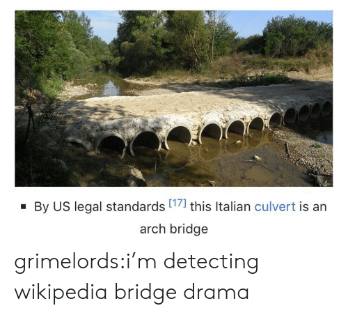 Target, Tumblr, and Wikipedia: By US legal standards 17] this Italian culvert is an  arch bridge grimelords:i'm detecting wikipedia bridge drama