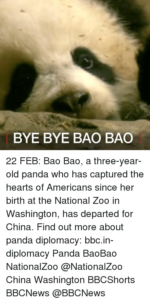 Memes, China, and Panda: BYE BYE BAO BAO 22 FEB: Bao Bao, a three-year-old panda who has captured the hearts of Americans since her birth at the National Zoo in Washington, has departed for China. Find out more about panda diplomacy: bbc.in-diplomacy Panda BaoBao NationalZoo @NationalZoo China Washington BBCShorts BBCNews @BBCNews