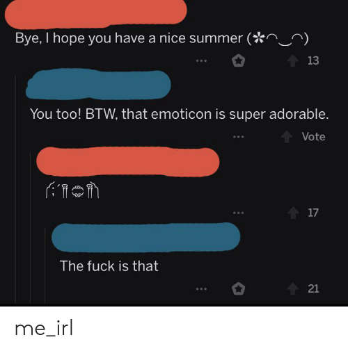 Summer, Fuck, and Hope: Bye, I hope you have a nice summer (  13  You too! BTW, that emoticon is super adorable.  Vote  17  The fuck is that  21 me_irl