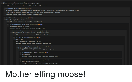 ✅ 25+ Best Memes About Plural Form of Moose | Plural Form of ...