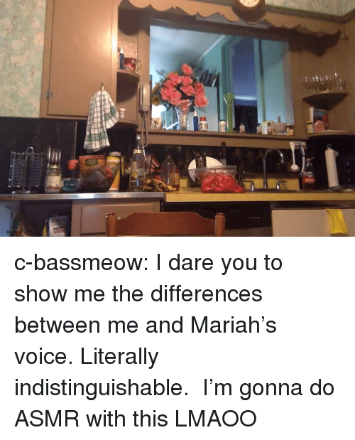 Tumblr, Blog, and Http: c-bassmeow:  I dare you to show me the differences between me and Mariah's voice. Literally indistinguishable.  I'm gonna do ASMR with this LMAOO