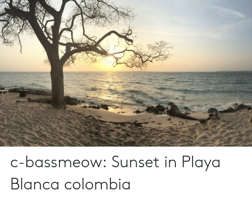 Tumblr, Blog, and Colombia: c-bassmeow:  Sunset in Playa Blanca colombia