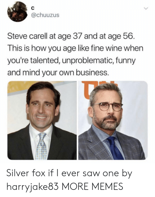 Dank, Funny, and Memes: C  @chuuzus  Steve carell at age 37 and at age 56  This is how you age like fine wine when  you're talented, unproblematic, funny  and mind your own business. Silver fox if I ever saw one by harryjake83 MORE MEMES