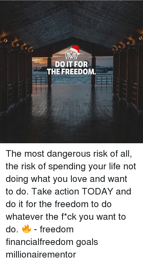 Goals, Life, and Love: (C  DOIT FOR  THE FREEDOM The most dangerous risk of all, the risk of spending your life not doing what you love and want to do. Take action TODAY and do it for the freedom to do whatever the f*ck you want to do. 🔥 - freedom financialfreedom goals millionairementor