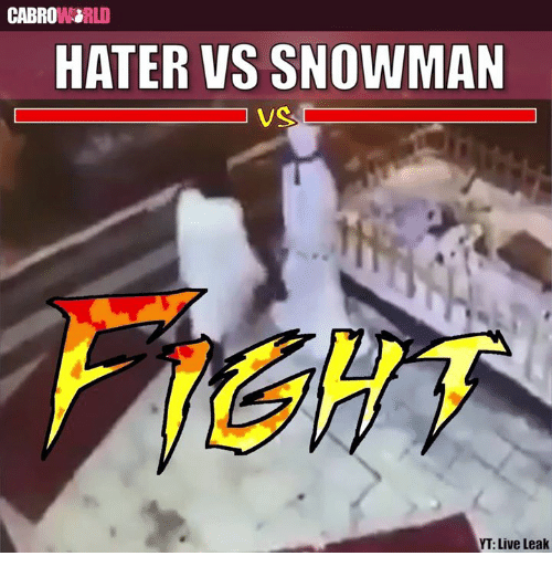 Memes, 🤖, and Leaks: CABROWRORLD  HATER VS SNOWMAN  VS  YT: Live Leak