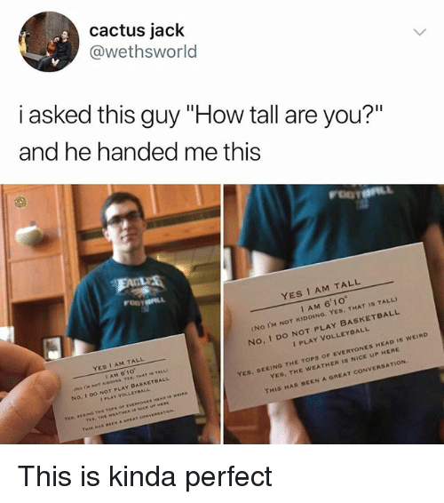 """Basketball, Head, and Memes: cactus jack  @wethsworld  i asked this guy """"How tall are you?""""  and he handed me this  YES I AM TALL  I AM 6'1o  (No I'M NOT KIDDING. YES, THAT IS TALL)  No, I DO NOT PLAY BASKETBALL  YES 1 AM TALL  I AM 6'10  No. I Do NOT PLAY BASKETBALL  I PLAY VOLLEYBALL  ES, SEEING THE TOPS OF EVERYONES HEAD Is wEIRD  YES, THE WEATHER Is NICE UP HERE  I PLAY VOLLEYBALL  YES THE WEATHE  THIS HAS BEEN A GREAT CONVERSATION.  AT COM This is kinda perfect"""