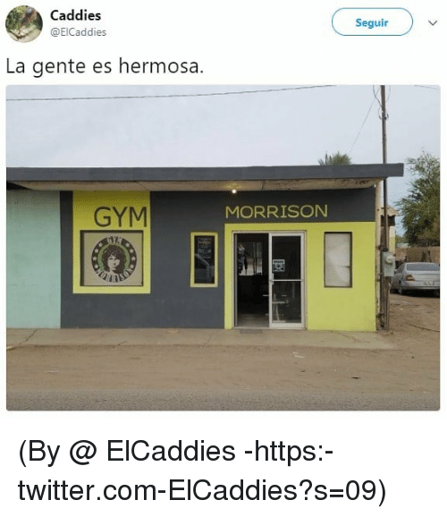 Gym, Twitter, and Com: Caddies  @ElCaddies  Seguir  La gente es hermosa.  GYM  MORRISON (By @ ElCaddies -https:-twitter.com-ElCaddies?s=09)