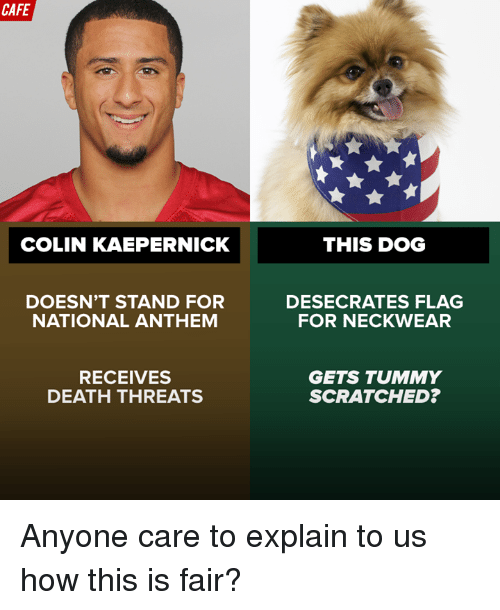 Colin Kaepernick, Dogs, and National Anthem: CAFE  COLIN KAEPERNICK  DOESN'T STAND FOR  NATIONAL ANTHEM  RECEIVES  DEATH THREATS  THIS DOG  DESECRATES FLAG  FOR NECK WEAR  GETS TUMMY  SCRATCHED? Anyone care to explain to us how this is fair?