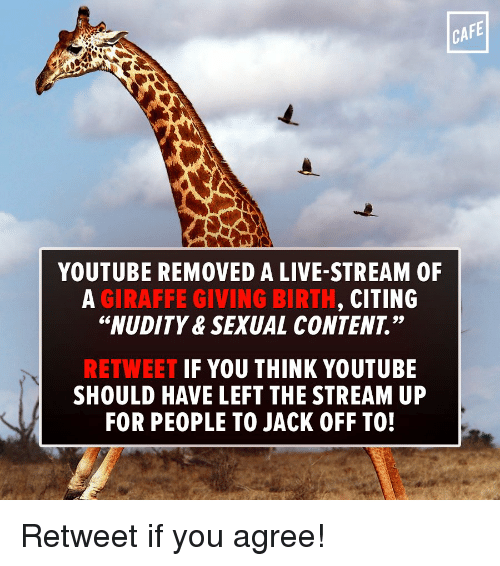 cafe youtube removed a live stream 0f giraffe giving birth 14919160 ✅ 25 best memes about giraffe giving birth giraffe giving,Giving Birth Memes
