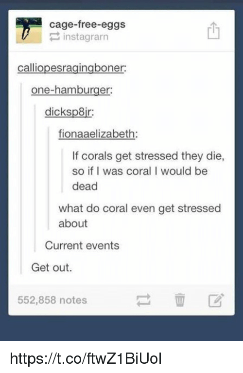 Memes, Free, and 🤖: cage-free eggs  P instagrarn  calliopesragingboner:  one-hamburger:  dicksp8ir:  fionaaelizabeth:  If corals get stressed they die,  so if I was coral I would be  dead  what do coral even get stressed  about  Current events  Get out.  552,858 notes https://t.co/ftwZ1BiUol