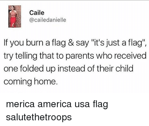 """America, Memes, and Parents: Caile  @cailedanielle  If you burn a flag & say """"it's just a flag"""".  try telling that to parents who received  one folded up instead of their child  coming home. merica america usa flag salutethetroops"""