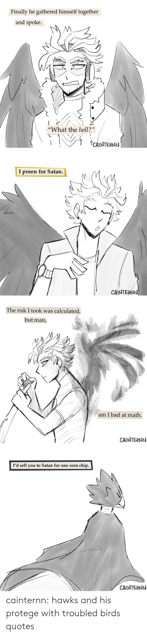 Target, Tumblr, and Birds: cainternn:  hawks and his protege with troubled birds quotes