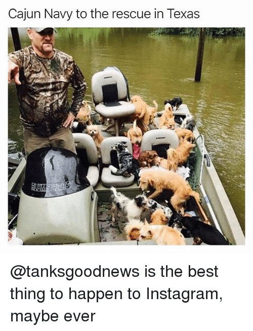 cajun navy to the rescue in texas tanksgoodnews is the 27491761 ✅ 25 best memes about cajun cajun memes