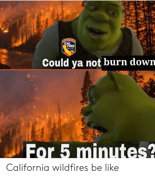 Be Like, Fire, and California: CAL  FIRE  Could ya not burn down  For 5 minutes? California wildfires be like