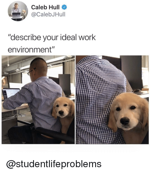 """Tumblr, Work, and Http: Caleb Hull  CalebJHull  """"describe vour ideal work  environment"""" @studentlifeproblems"""
