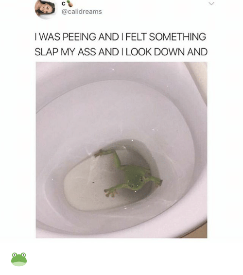 Ass, Memes, and 🤖: @calidreams  IWAS PEEING AND I FELT SOMETHING  SLAP MY ASS AND I LOOK DOWN AND 🐸