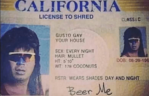 Beer, Sex, and California: CALIFORNIA  LICENSE TO SHRED  CLASS:C  GUSTO GAV  YOUR HOUSE  SEX EVERY NIGHT  HAIR MULLET  HT:S 10  WT 178 COCONUTS  DOB: 08-20-106  RSTR WEARS SHADES DAY AND NIGHT  Beer Me