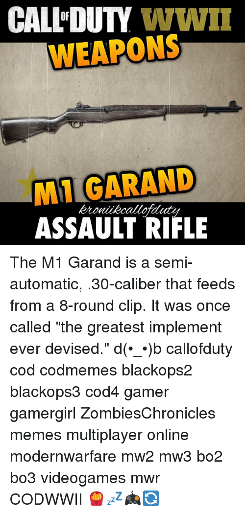 CALL DUTY WWII WEAPONS IMI GARAND ASSAULT RIFLE the M1