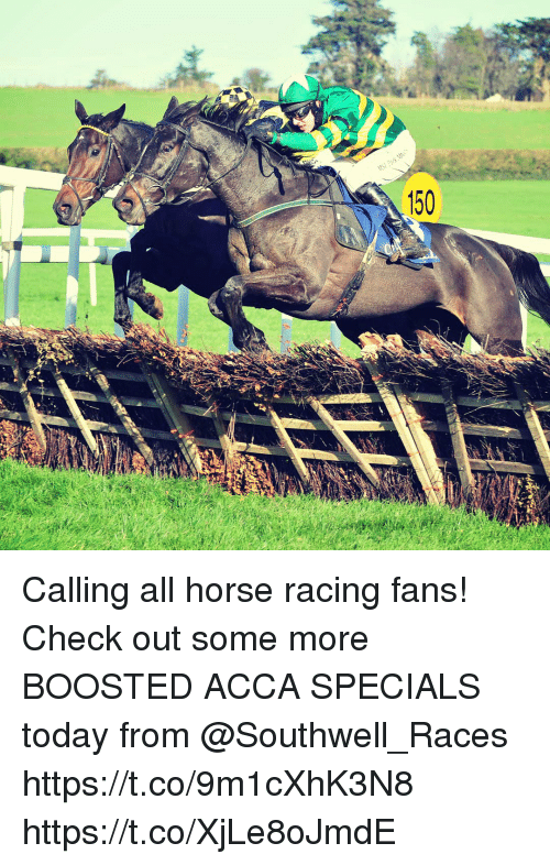 Calling All Horse Racing Fans! Check Out Some More BOOSTED