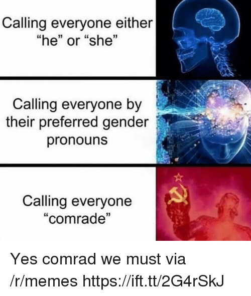 """Memes, Gender, and Yes: Calling everyone either  """"he"""" or """"she""""  1  Calling everyone by  their preferred gender  pronouns  Calling everyone  """"comrade  13 Yes comrad we must via /r/memes https://ift.tt/2G4rSkJ"""