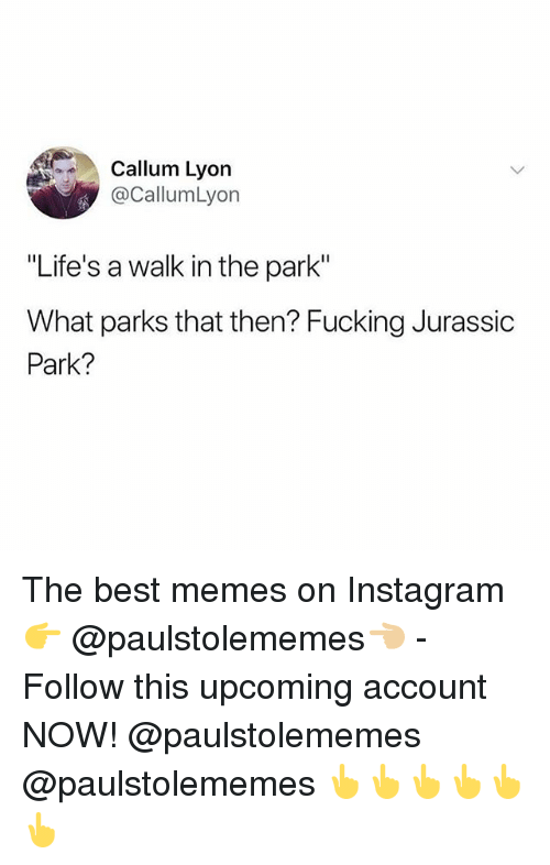 """Fucking, Instagram, and Jurassic Park: Callum Lyon  @CallumLyon  """"Life's a walk in the park""""  What parks that then? Fucking Jurassic  Park? The best memes on Instagram 👉 @paulstolememes👈🏼 - Follow this upcoming account NOW! @paulstolememes @paulstolememes 👆👆👆👆👆👆"""