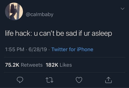 Iphone, Life, and Twitter: @calmbaby  life hack: u can't be sad if ur asleep  1:55 PM 6/28/19 Twitter for iPhone  75.2K Retweets 182K Likes