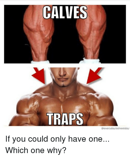 calves traps everydayischestday if you could only have one which 27260023 ✅ 25 best memes about calves calves memes