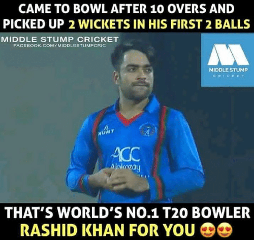 Facebook Memes And Cricket CAME TO BOWL AFTER 10 OVERS AND PICKED UP